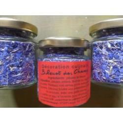 Fleurs nature de bleuets